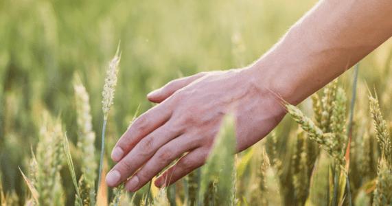 Увлажняющий и Защитный крем во время дачного сезона